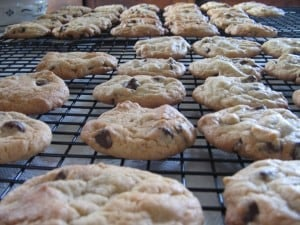 tray of cookies 300x225 Does Breastmilk Come in Chocolate?