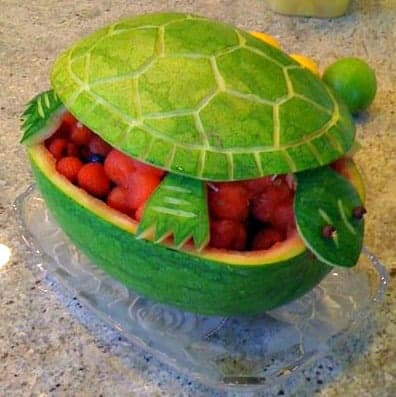 watermellon turtle Turtle Themed Baby Shower