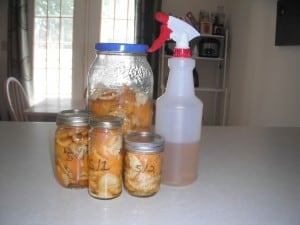 DIY Orange Chemical Free Cleaner! 1