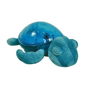 Tranquil Turtle Makes Bedtime More Fun! 2