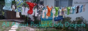 All About Pocket Cloth Diapers 4