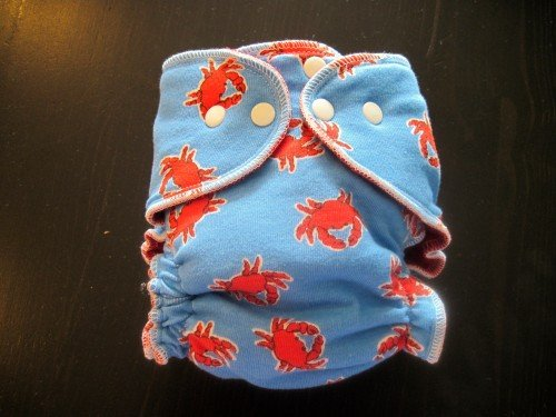IMG 1626 2 500x375 Giveaway  LittleBitLoo Cloth Diaper! CLOSED