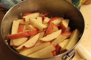 Baked Red Potato Fries 3