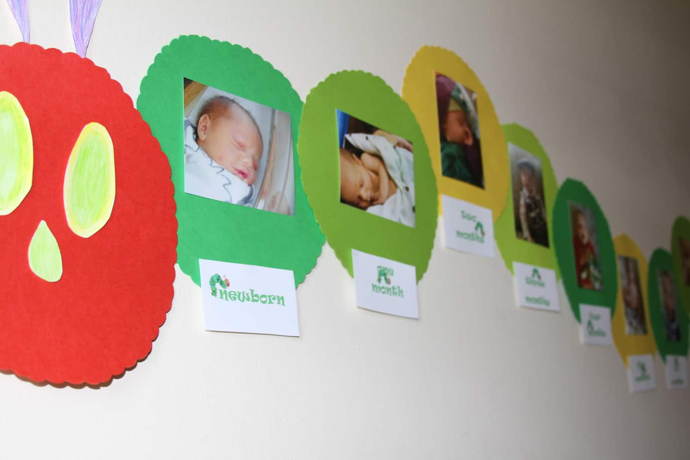 I got scrapbook paper ... & Decor and What to Wear~The Very Hungry Caterpillar Birthday Bash!