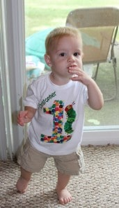Decor and What to Wear~The Very Hungry Caterpillar Birthday Bash! 5