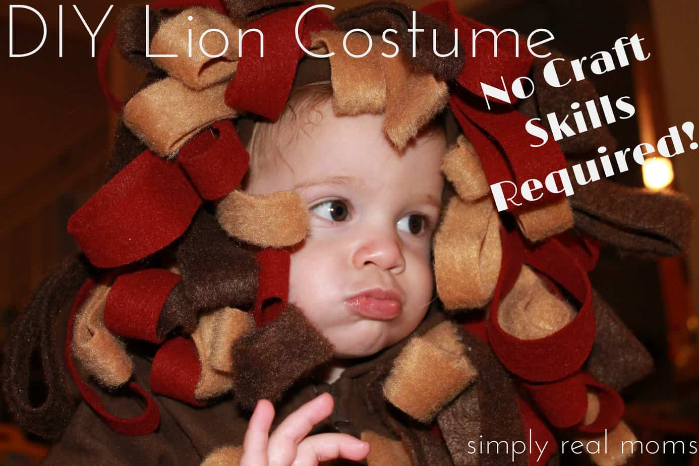 DIY Lion Costume with little to no craft skills required. This is ...