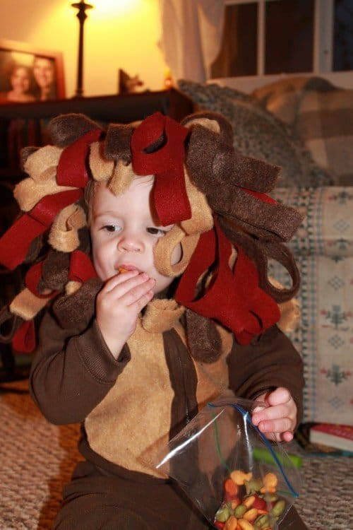 IMG 1848 500x750 DIY Lion Costume No craft skills required!