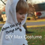 DIY Max from Where the Wild Things Are Costume and the site to order hooded footie pajamas 500x749 150x150 DIY Lion Costume No craft skills required!