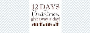 12 Days of Christmas: The Bitsy Bag Giveaway 5