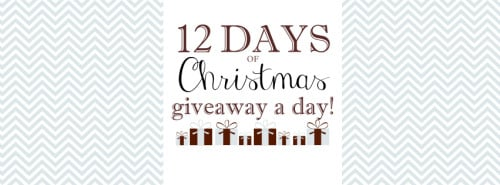 12daysimg 500x185 12 Days of Christmas Giveaway: DORIDORI Baby Swaddle Blanket and Changing Pad!