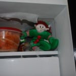Elf Magic Elf: Sharing the Wonderful Holiday Tradition