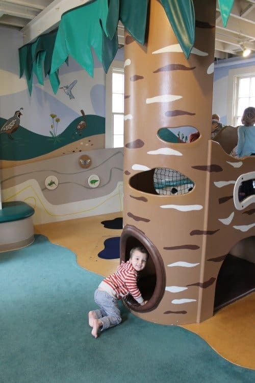 Bay Area Discovery Museum Family Fun For All Ages