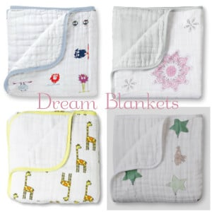 The Dream Blanket: Your Toddler's Best Sleep Ever 1