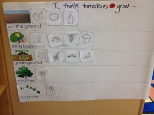 From Seeds to Sprouts-Planting with Children 4
