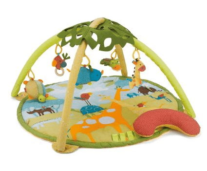 Skip Hop Activity Gym Giveaway from www.simplyrealmoms.com