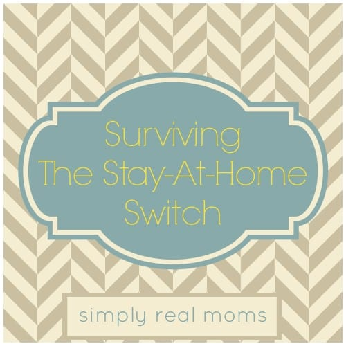 Surviving the Stay At Home Switch: Great Tips for going from career to kids!