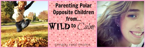 Parenting Polar Opposite Children-From Wild to Calm 2