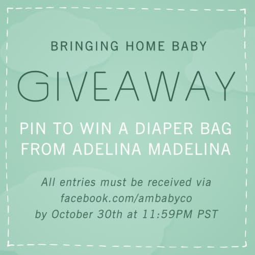 ADELINA MADELINA PINTEREST PARTY GIVEAWAY