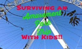 Surviving an Amusement Park Trip With Kids