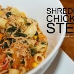 Shredded Chicken Stew