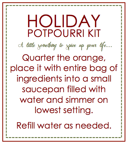 Holiday Potpourri Kit
