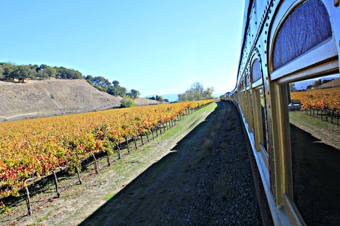 Experiencing the Napa Valley Wine Train 5