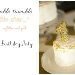 """Twinkle Twinkle Little Star"" First Birthday Party"