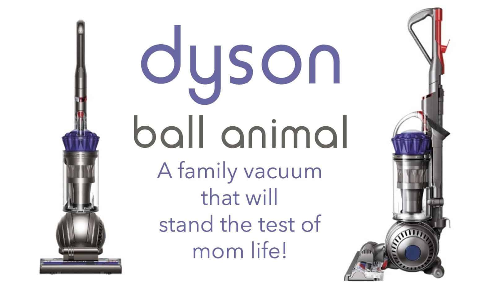 Dyson Ball Animal: Momlife Approved 5