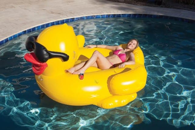Floating pool duck