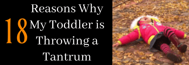 Reasons Why My Toddler is Throwing a Tantrum