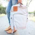 Whirlwind Family Diaper Bags