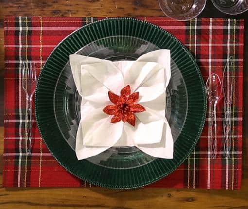Snowflake or Poinsettia Folded Napkins